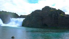 Misty Hjalparfoss Waterfalls med det Lupine blommafältet lager videofilmer