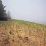 Misty Interlude At Big Bay delstatspark Royaltyfri Bild