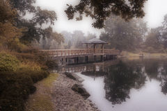 Misty Japanese garden Stock Photo
