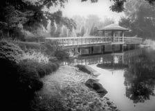 Misty Japanese garden Stock Photos