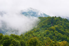 misty krajobrazu Obraz Royalty Free