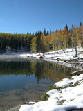 Misty Lake. Lake on the Grand Mesa on the Western Slope of the Rockies in early fall Royalty Free Stock Photography