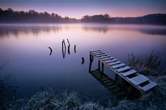 Misty lake. In early morning royalty free stock photos