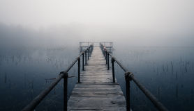 Misty lake Royalty Free Stock Photo