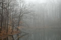 Misty Lake  Stock Images