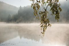 Misty lake Stock Photo