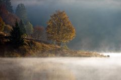 Misty lake Stock Photos