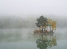 Misty Lake. Fog on the lake early in the morning Royalty Free Stock Images