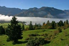 Misty Lake Bohinj Triglav NP Imagen de archivo libre de regalías