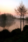 Misty lake at dawn Stock Images