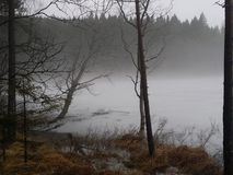 Misty lake. Foggy Lake at dusk Stock Photography