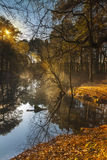 Misty lake in the middle of woodland in Poole Stock Photo