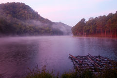 Misty lake morning. A cold morning with fog rising up from a lake Stock Photography