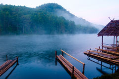 Misty lake morning. A cold morning with fog rising up from a lake Royalty Free Stock Photos