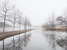 Misty lake in morning Royalty Free Stock Photography