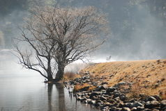 Misty Lake Navarone. A lonely bench looking over Lake Navarone on a misty morning Royalty Free Stock Photos