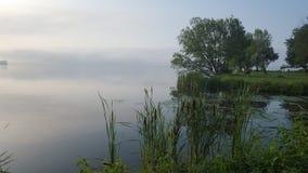Misty Lake nevoenta na manhã fotografia de stock