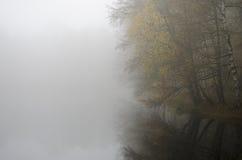 Misty lake Royalty Free Stock Photos
