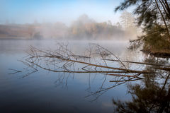 Misty Lake Royalty Free Stock Photography