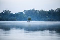 Misty lake and tropical jungle Stock Photo