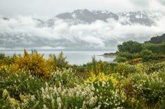 Misty Lake Wakatipu - Queenstown Imágenes de archivo libres de regalías