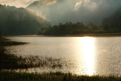 Misty lake in the woods in mountains, in rays of dawn Royalty Free Stock Image