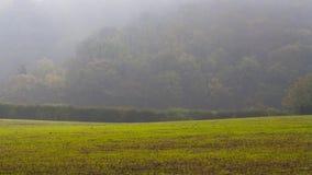 Misty countryside surrey uk Royalty Free Stock Photos