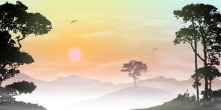 Misty Landscape Stock Image