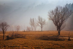 Misty landscape   in  Catalan Pyrenees Royalty Free Stock Photo