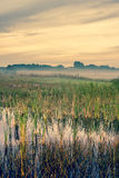 Misty landscape with a quiet lake Royalty Free Stock Photography
