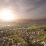 Misty Landscape Of Sicilian Hinterland Stock Image