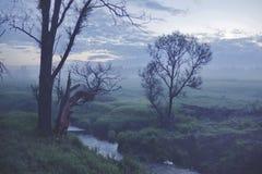 Misty landscape. Small rive. Smolensk region. Misty landscape. Small river in the Smolensk region at dawn royalty free stock photos