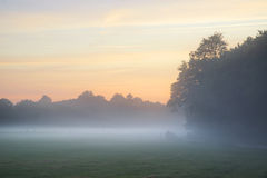 Misty landscape during sunrise in English countryside landscape Stock Photo