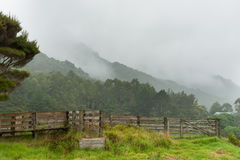 Misty landscape on wet day in Northland New Zealand. Misty landscape from surrounding hills and farm on wet day in Northland New Zealand Royalty Free Stock Photo