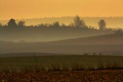 Misty Layers Immagini Stock