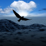 Misty light and bird in skies stock photography