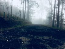 Misty mountain road. Misty lonely road to top of a mountain Royalty Free Stock Images