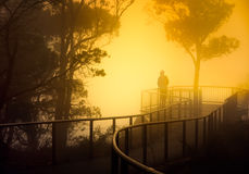Misty Lookout. A misty Llookout in Southern Australia stock images