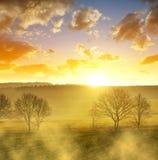 Misty March-Morgen in der Tschechischen Republik Stockfoto