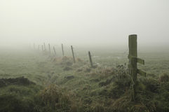 Misty meadow. A misty meadow in the countryside on a winters day Royalty Free Stock Image