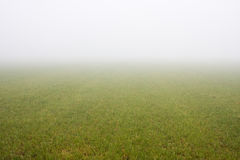 Misty meadow Royalty Free Stock Images