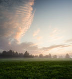 Misty meadow at dawn Royalty Free Stock Images