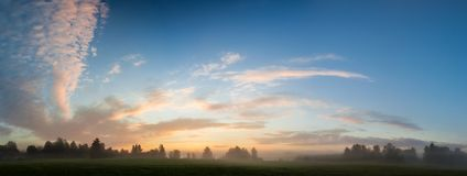 Misty meadow at dawn panorama Stock Images