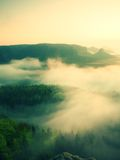Misty melancholic morning. View into long deep valley full of fresh  spring mist. Landscape within daybreak after rainy night Stock Photos