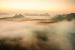 Misty melancholic morning. View into long deep valley full of fresh  spring mist. Landscape within daybreak after rainy night Royalty Free Stock Images