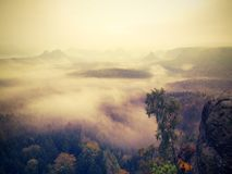 Misty melancholic morning. View over birch tree to deep valley full of heavy mist. Autumn landscape within daybreak. Misty melancholic morning. View over birch stock photo