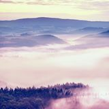 Misty melancholy daybreak in beautiful fairy valley. Peaks of rock trim creamy foggy clouds Royalty Free Stock Images