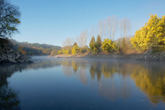 Misty Mondego Royalty Free Stock Photo