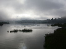 Misty morning. At a lake, Malaysia Royalty Free Stock Photo
