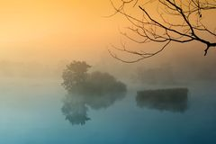Misty morning. Colorful misty morning by the lake Stock Images